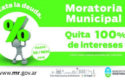 municipio_aviso-6x13