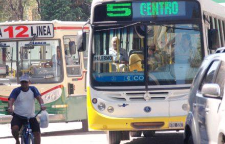 colectivos-660x330