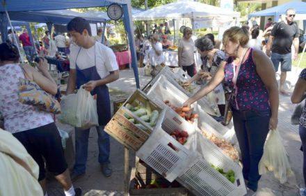 mercados_populares_municipales_4_