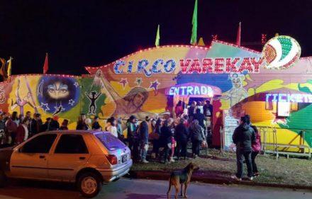 03-circo