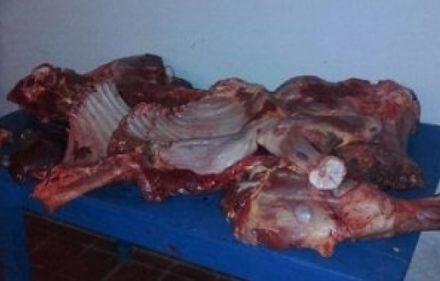 carne-faenada-1-652x330