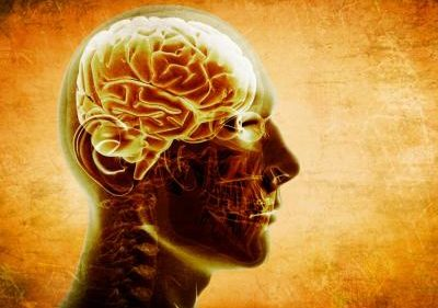 cerebro-calendario_0