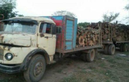 madera_52689_52689