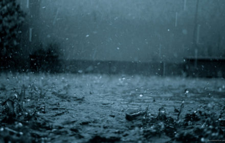dark-rain