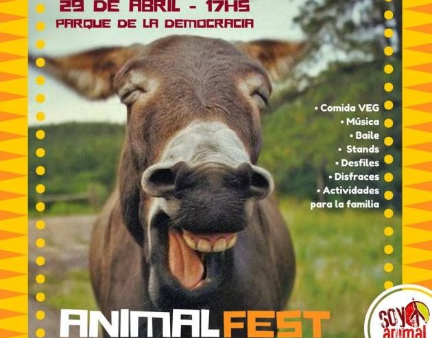 soy_animal_animal_fest_2018_1_63329_63329