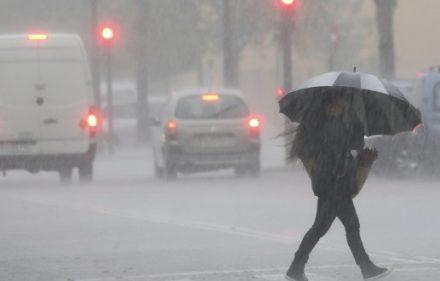 GRA035. VALENCIA, 02/11/2015.- Las fuertes lluvias caídas durante la pasada noche, de hasta 138 litros por metro cuadrado, y los fuertes vientos han derribado árboles y han complicado el tráfico en las carreteras de la Comunitat Valenciana, que se encuentra en alerta naranja, aunque no se han registrado daños personales. EFE/Juan Carlos Cárdenas