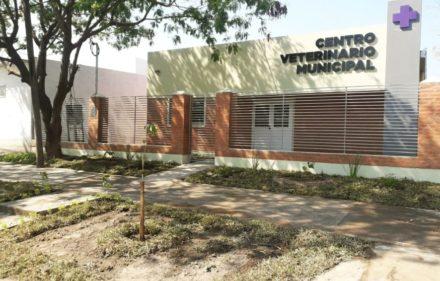 centro veterinario municipal