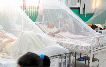 dengue_misiones_84265_84265