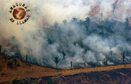 001-amazonas-incendio