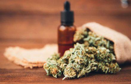 misiones-cannabis-medicinal